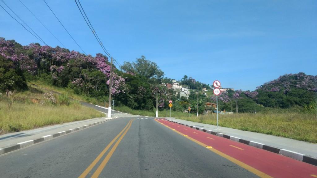 Avenida Guilherme Pinto Monteiro 3